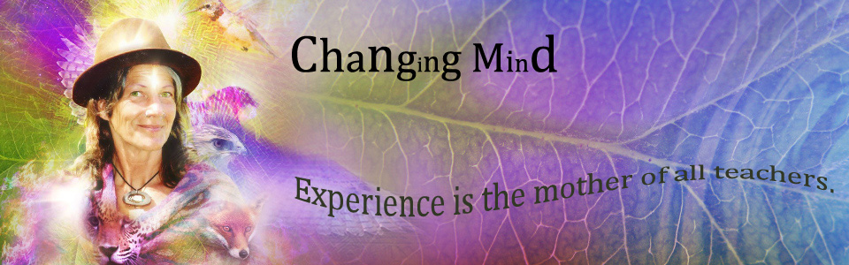 52 day on-line Rite of Passage for experiencing enlightenment as an Adult.